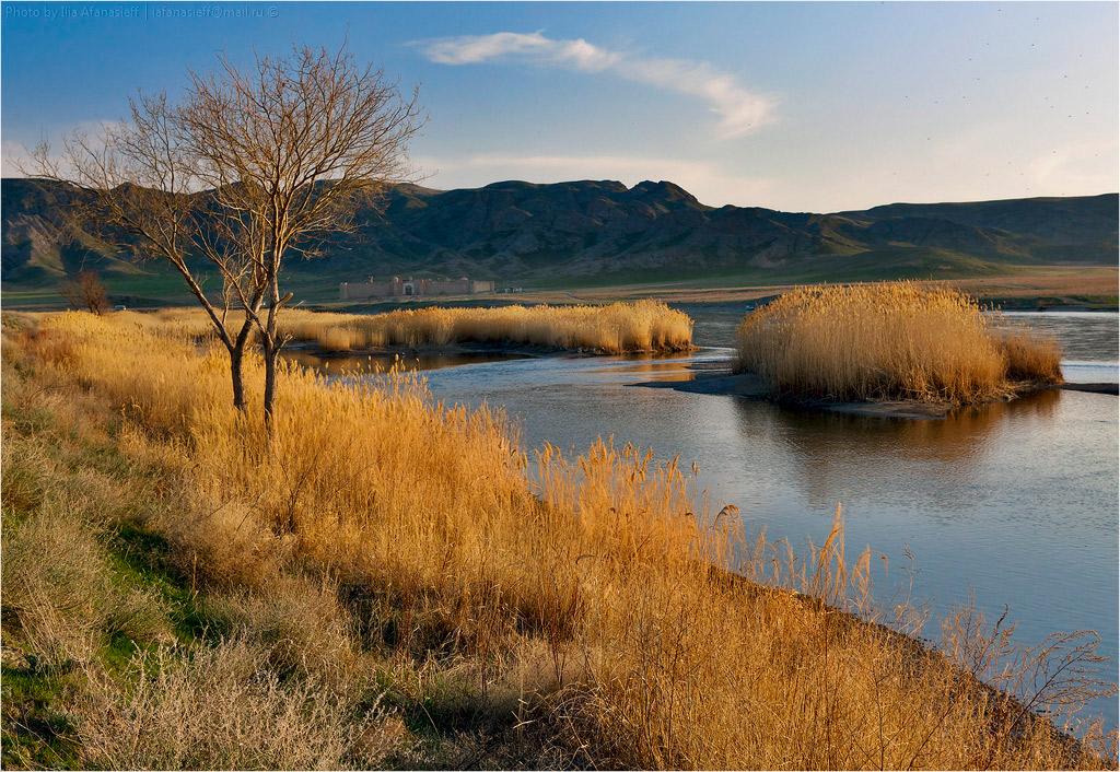 Река Или (каньон Писаных скал)
